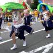(3)渋川へそ祭り (へそ踊り)