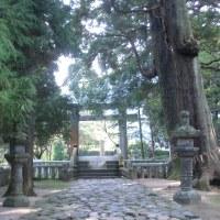 再訪分です。 櫻井神社
