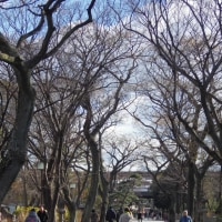 大阪で最も古い公園の一つ 住吉公園 2 (大阪市)