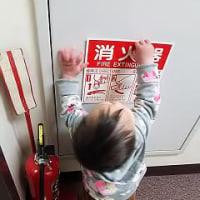 英語教室中の1歳児