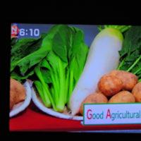 3/25 GAPというオリンピック用農業基準