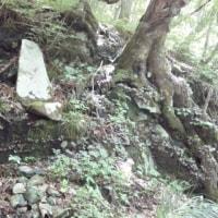 (紫)黒森山…岩手一等三角点研究会