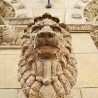 獅子に会いに 丸石ビルディング