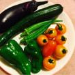 野菜たち。