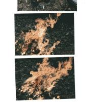 ゼロ磁場 西日本一 氣パワー・開運引き寄せスポット 古武士妻子の火焔(3月16日)