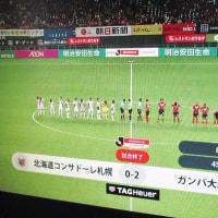 よしッ!ここからリスタートだッ! J1第11節vsコンサドーレ札幌〇