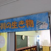 瀬野川水族館完成