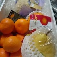 冬の果物ありがとう!