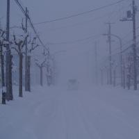 猛吹雪でホワイトアウト