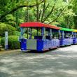 盛夏の昭和記念公園を一巡りです 其の1