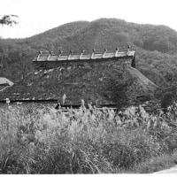 茅葺民家 岡山県旧奥津町 ススキのある風景