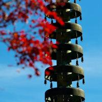 秋の終わりに長谷寺へ