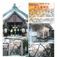 花巡り 「梅-165」 元三島神社
