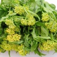 かき菜の花と日向夏のサラダ