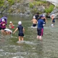 川で泳ぐの楽しいんだね☀
