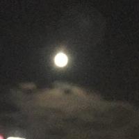 昨晩は月か丸かったね