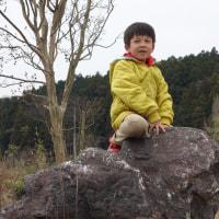 3月23日(木)園の様子