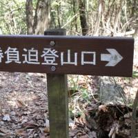 ㉝ 東中倉山~八世以山縦走登山 : 坂歩こう会  UP7日目最終章