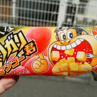 Two days ago, I could eat popsicle named Garigari-kun that have taste of mango.