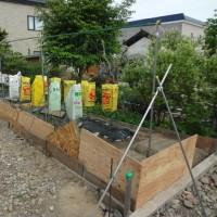菜園大詰め&ムーブ直った!(^◇^)!