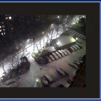 雪が降ったゾ~~(^^♪)