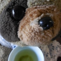 岡部茶の新茶