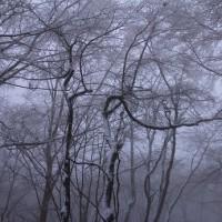 雪歩き 明神平 東吉野