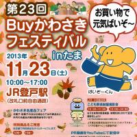 Buyかわさきフェスティバルinたま !!