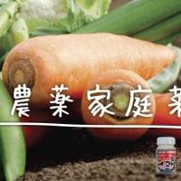 ―コマツ菜とホウレン草の旬の味―