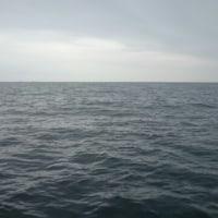 10月22日イカ釣り