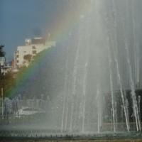 早朝の平和公園の噴水に虹が