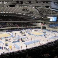 3917.あなたは体操競技を現場で観戦したいと思いますか?