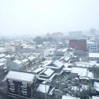 大雪と俳句教室(土井卓美)