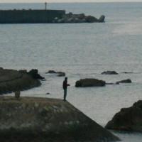 人気のアオリイカ釣り。