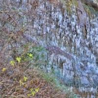 梅ヶ瀬渓谷の氷柱