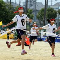 暑かった孫娘の体育祭