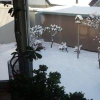 雪から強風に>_<