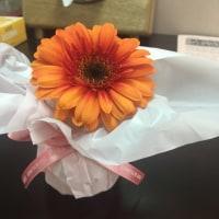 一輪の花…じんわり喜び