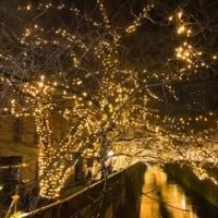東京はキラキラ、クリスマスはぎらぎら