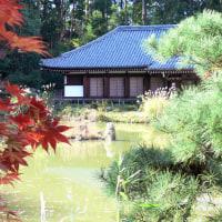 紅葉と浄瑠璃寺本堂