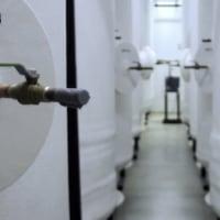 『遺体の冷凍保存(Cryonics)』を決断することは...