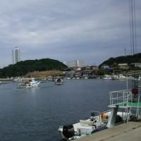 南知多町大井漁港で
