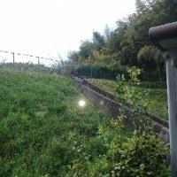 草刈~レグ2