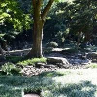 東京大学 懐徳館と懐徳園
