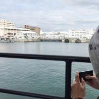 ■横須賀の海へ 春■