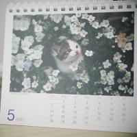 たった一日の・・・ 4月のカレンダー