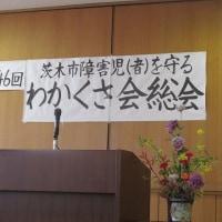 4駅ラン / わかくさ会総会 / 東京へ