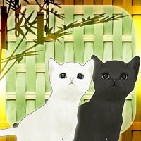 新作アプリ脱出ゲーム 子猫たちと七夕を作りました!