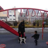 先輩家族と 遊び場