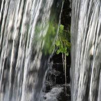 白滝川を上る